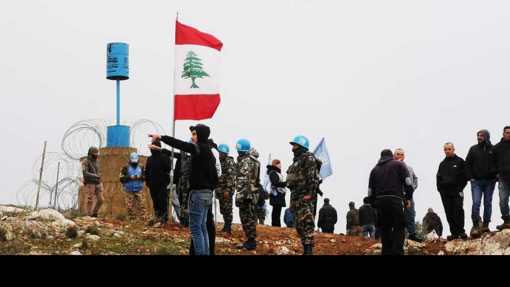 أهالي #ميس_الجبل يرفعون #العلم_اللبناني عند الخط الأزرق