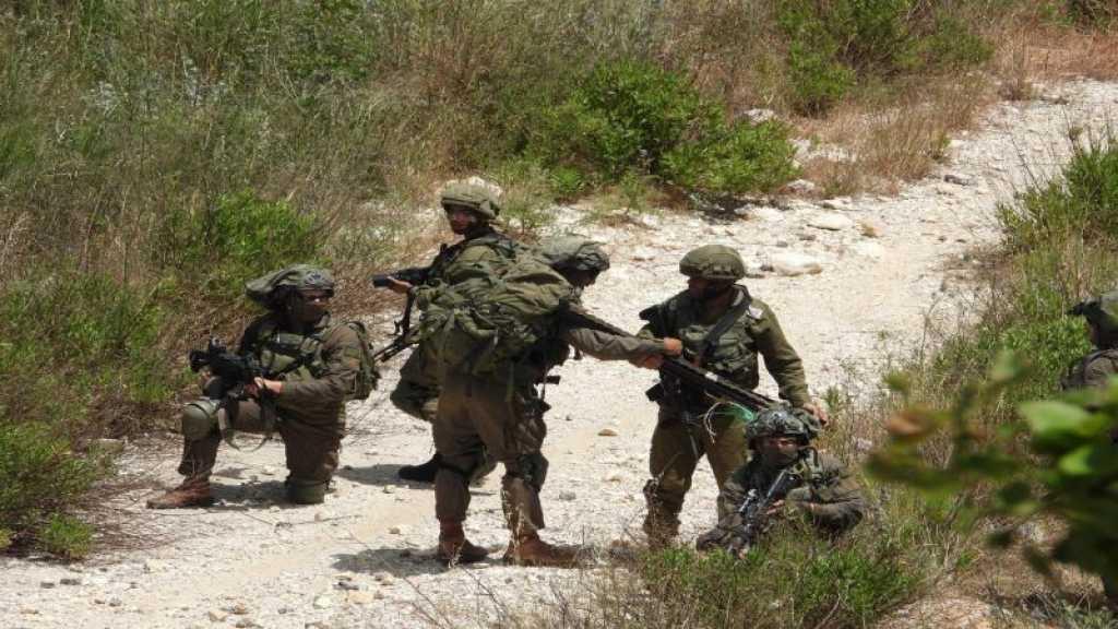 15 جنديًا صهيونيًا يتخطّون بوابة الجدار الاسمنتي جنوب العديسة