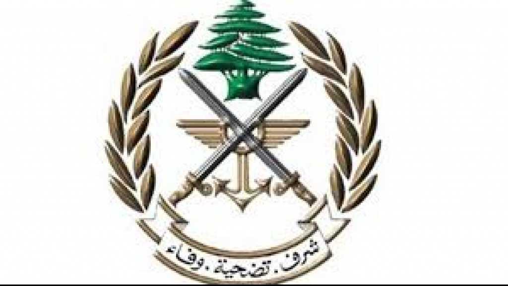 توقيف سودانيين حاولوا دخول الأراضي الفلسطينية المحتلة في عيتا الشعب وحولا