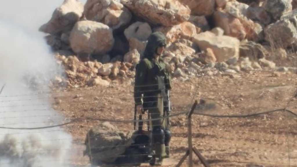 إعلام العدو: نصرالله جدي في تهديداته، ونشر الدمى على الحدود قبالة حزب الله هو أسلوب 'ولادي'